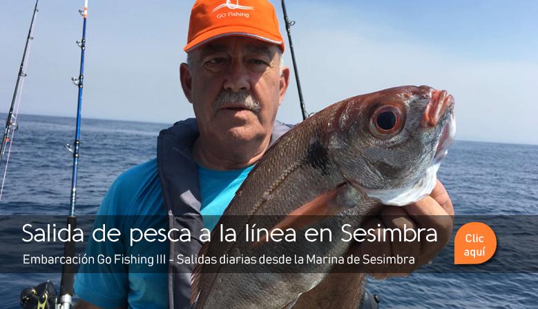 Salida de pesca en Sesimbra